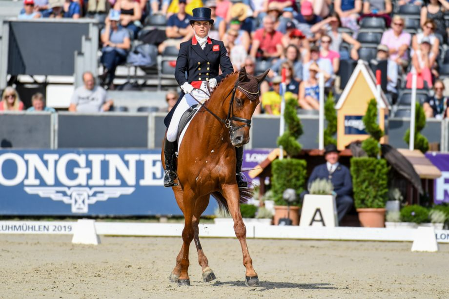 European Eventing Championships Piggy French