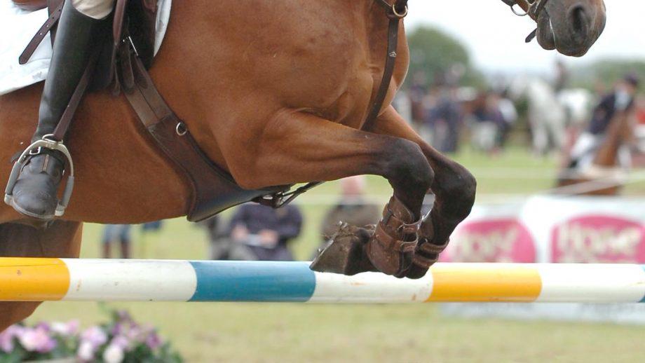 Pony Club Championships 2021