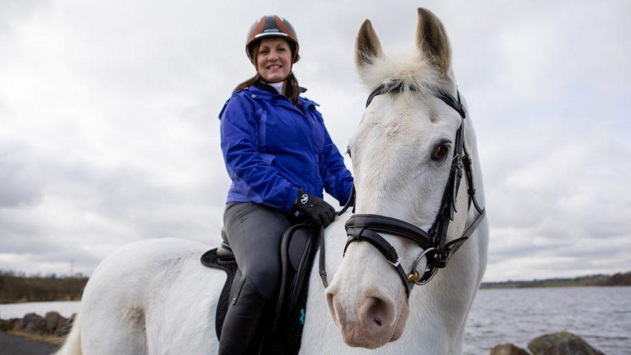 world horse welfare tinto