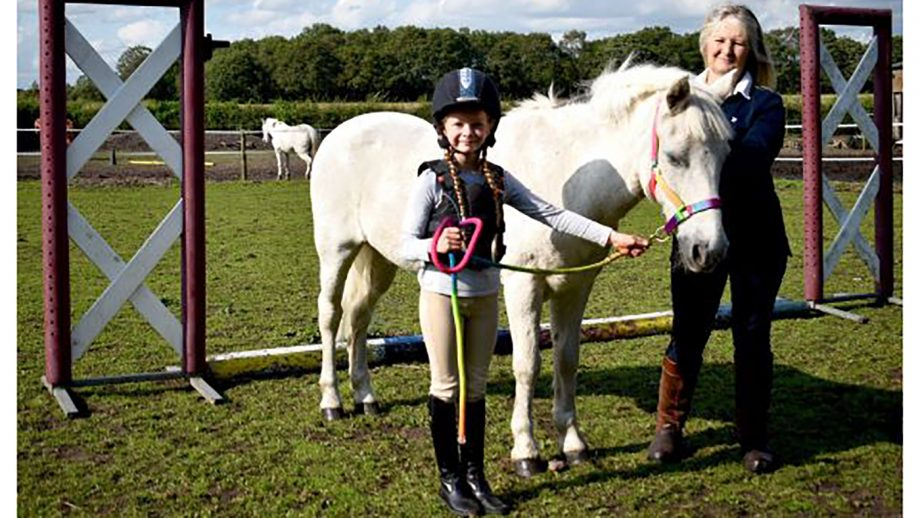 Britain's unsung equine heroes: the 33-year-old riding school pony with no desire to retire