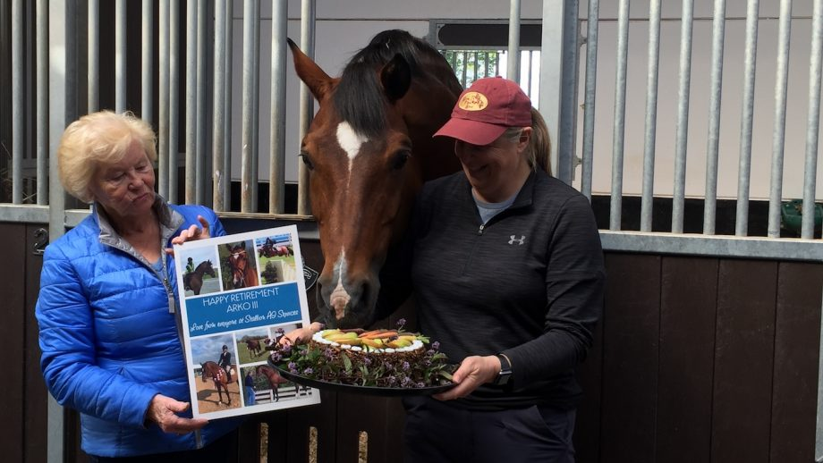 Cake, Polos and prosecco — everything an Olympic stallion needs at his retirement party