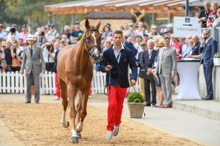 European Eventing Championships final trot-up