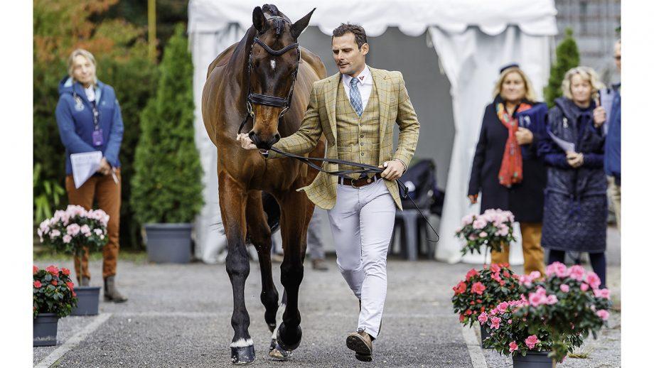 Alex Bragg and Zagreb at Pau 2019.