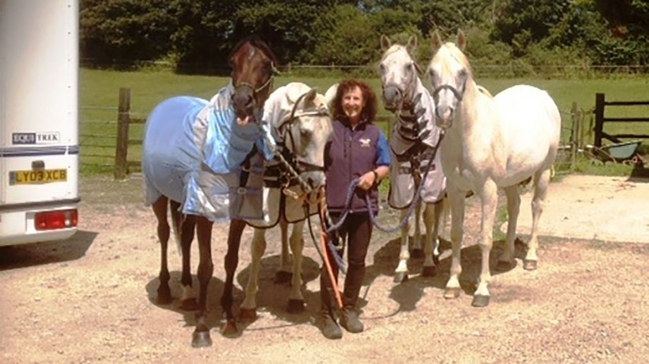 Annie Joppe's endurance blog: seeing things from the other side of the fence