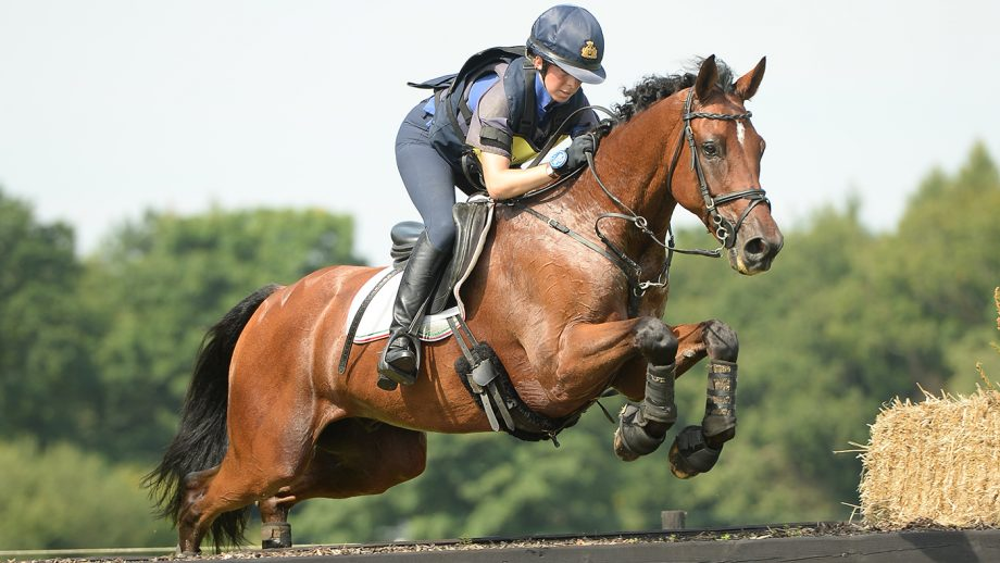 VittoriaPanizzon riding Argentinus at Wellington Horse Trials.