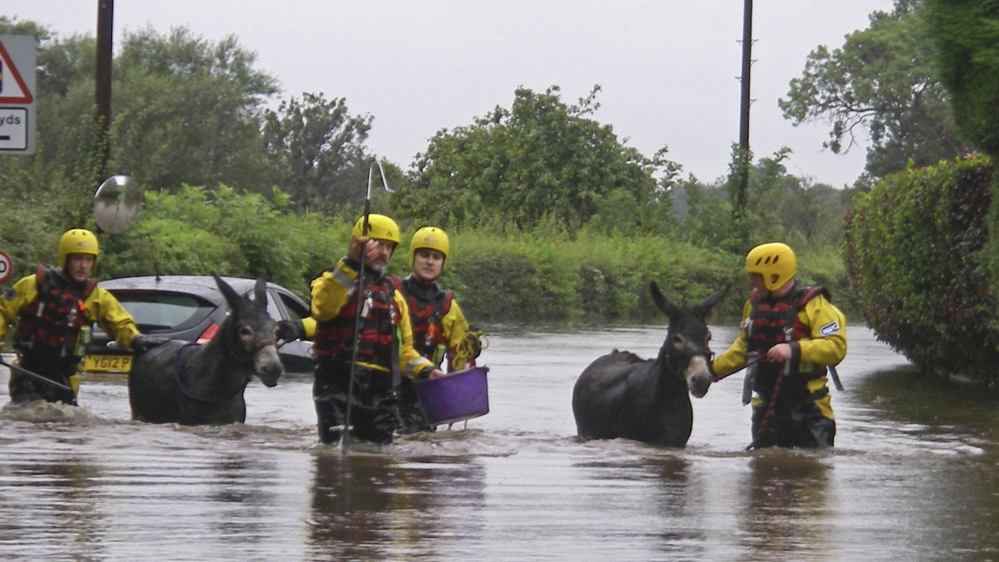 Owners urged to 'act early' after flood warnings: emergency rescue teams on standby - Horse & Hound