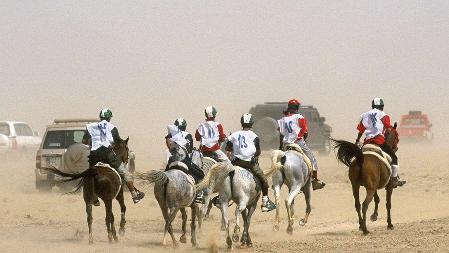 BBAFTY Endurance riding in Dubai