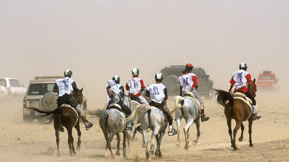 BBAFTY Endurance riding in Dubai