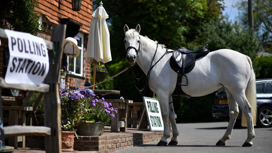 A horse stands outside a polling station, set up in a pub, as it's rider votes in the European Parliament elections, near Tonbridge, south east England, on May 23, 2019. - Voting got under way in Britain early on Thursday in elections to the European Parliament -- a contest the country had not expected to hold nearly three years after the Brexit referendum. (Photo by Ben STANSALL / AFP) (Photo credit should read BEN STANSALL/AFP via Getty Images)