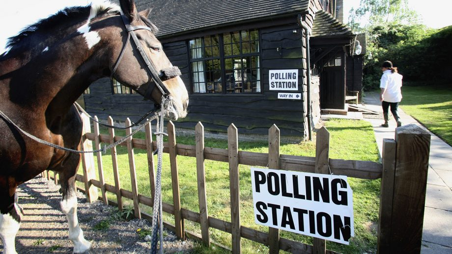 horse industry election