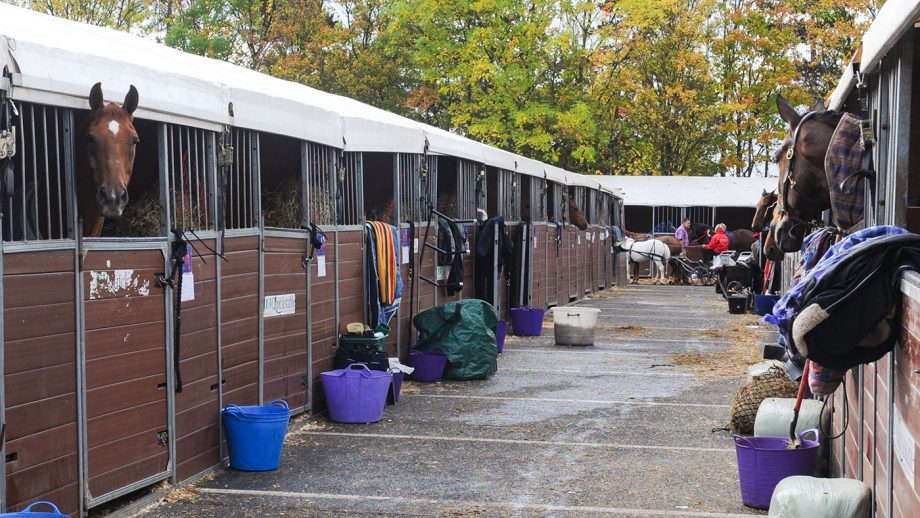 Temporary stables at HOYS 2011