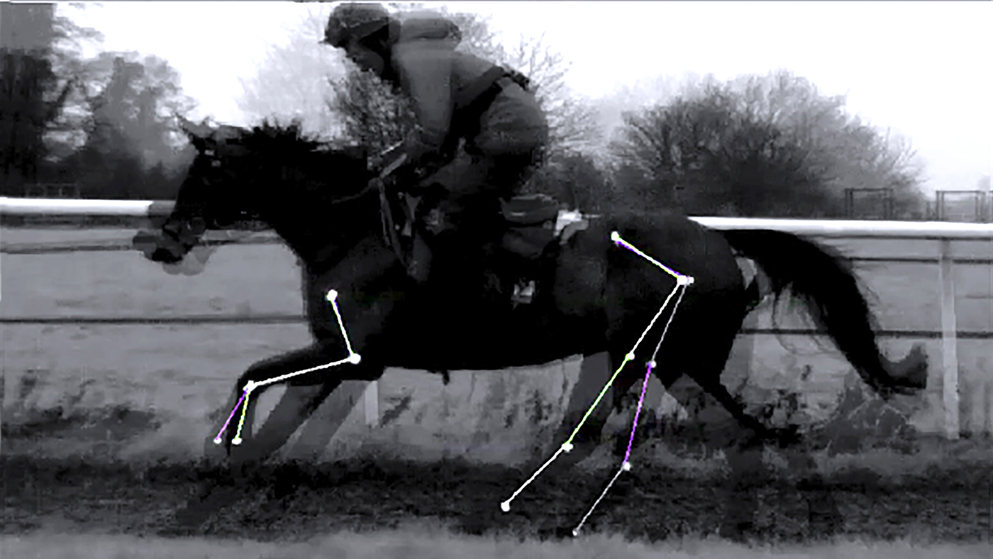 Reducing saddle pressure can increase flexion and power *H&H Plus*