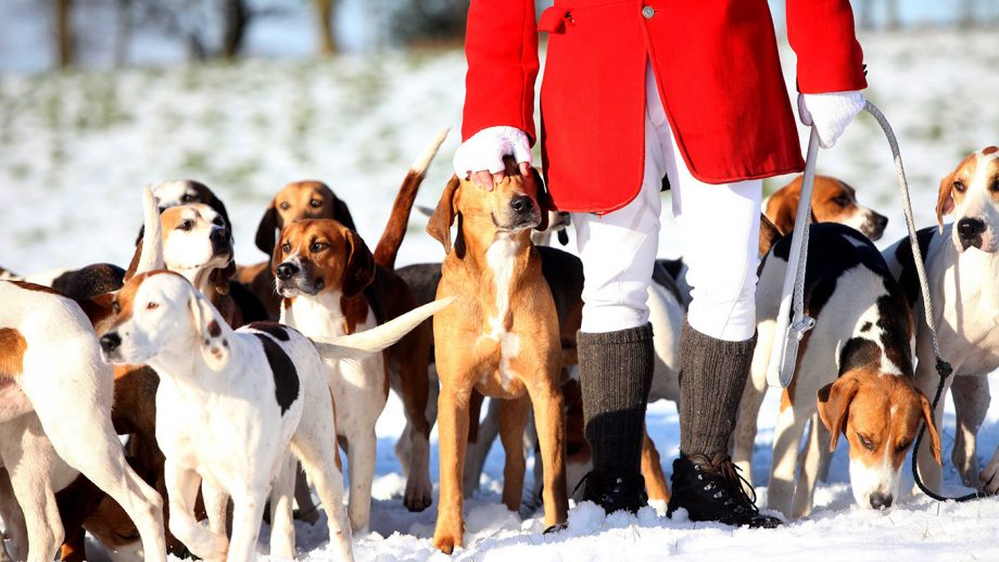 DAHNF6 Rivington boxing day hunt fox hunting dogs snow winter cold