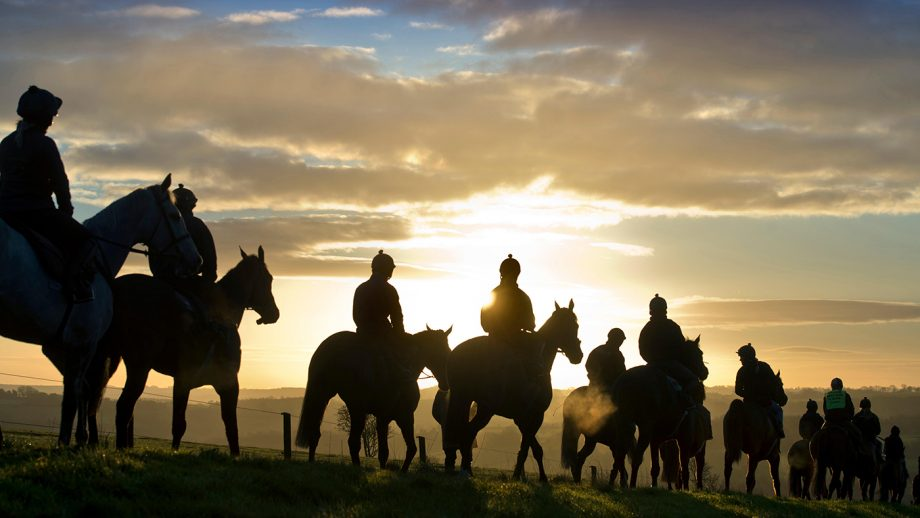 EEXPB2 A string of racehorses are ridden out at dawn in the Gloucestershire Cotswolds UK. Image shot 2014. Exact date unknown.