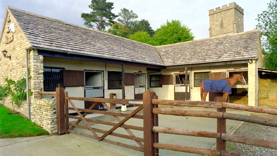 A28AG6 Horse stands outside small stone stable block