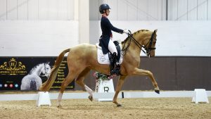 Addington High Profile Dressage 10th to 12th January 2020 026 - Charlotte Dujardin and Gio