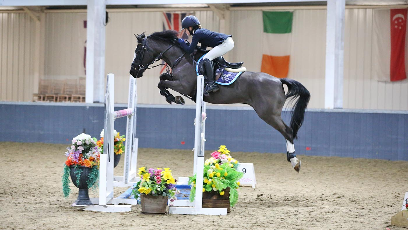 'We tried to retire him, but he wasn't having it': 28-year-old showjumping pony qualifies for Royal International