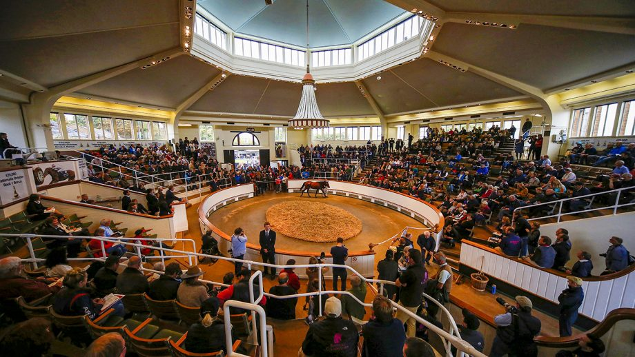 Tattersalls Auction House in Newmarket