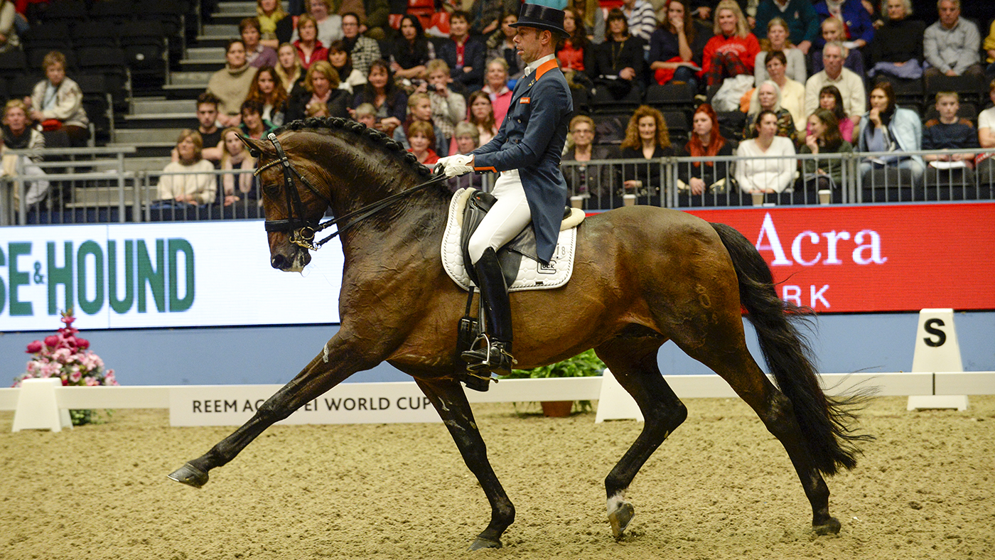 'Our charmer, our heartbreaker': final tributes paid to champion stallion - Horse & Hound