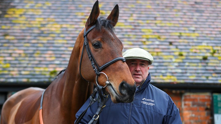 National Hunt trainer Paul Nicholls poses alongside Cyrname during a stable visit at Manor Farm Stables ahead of the Betfair Ascot Chase meeting on February 10, 2020 in Ditcheat, Somerset. (Photo by Michael Steele/Getty Images)
