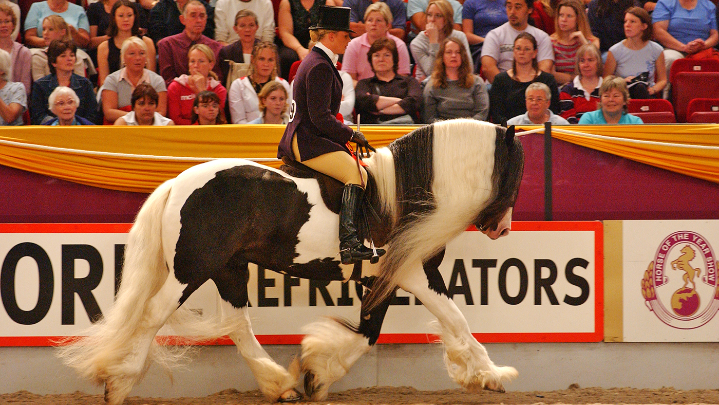 Farewell to 'scruffy gypsy cob foal' who became HOYS champion - Horse & Hound