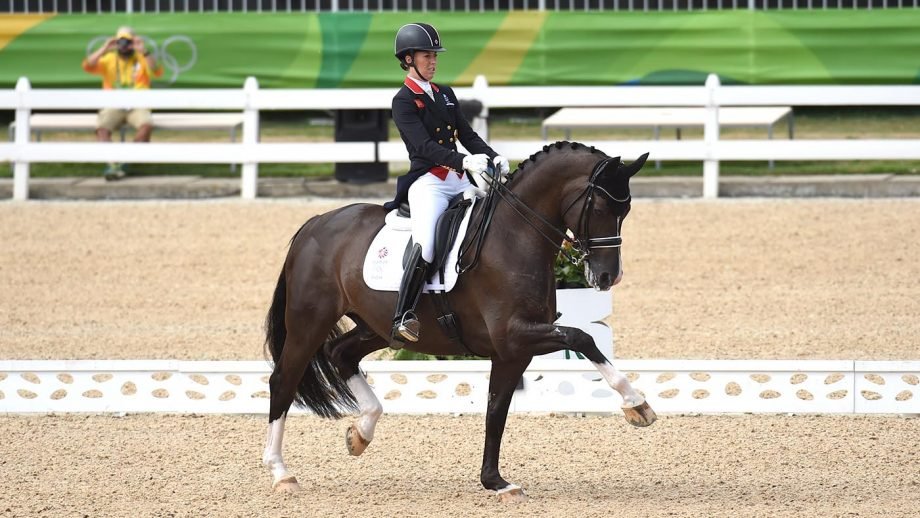 freeview equestrian sport