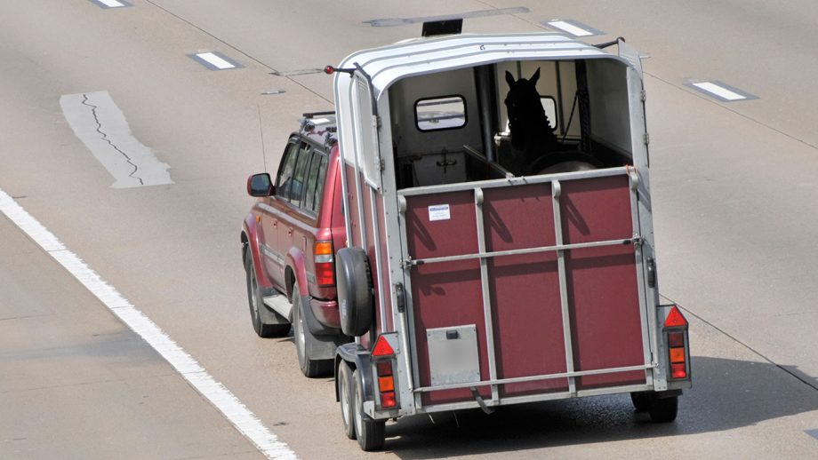 Trailer towing tests have been scrapped which means you no longer need a special licence to tow a horse trailer