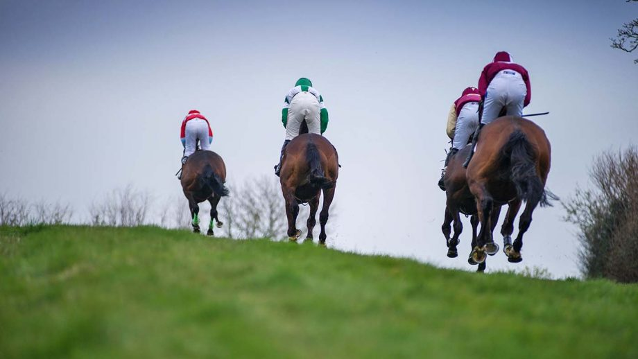 T29E89 Cotley, Chard, Somerset, UK. 31st Mar, 2019. Action from The Greenslade Taylor Hunt Mens Open Race, at The Cotley Hunt Point-to-Point Race meeting. Credit: David Partridge/Alamy Live News
