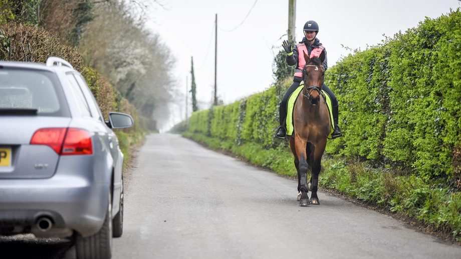Horse and rider hacking on the road in high viz