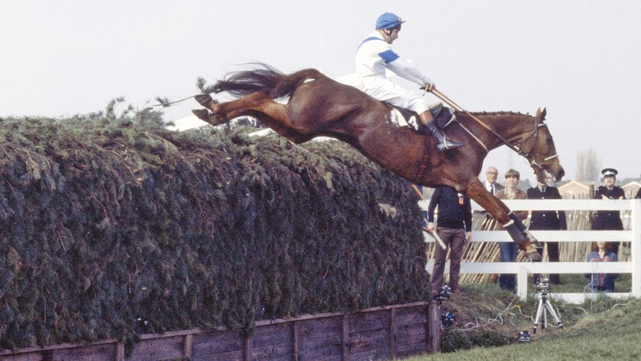 English jockey Bob Champion on Aldaniti (1970 – 1997) clearing Becher's Brook for the second time on the way to victory in the Grand National at Aintree Racecourse, Liverpool, 4th April 1981. (Photo by Bob Thomas/Getty Images)