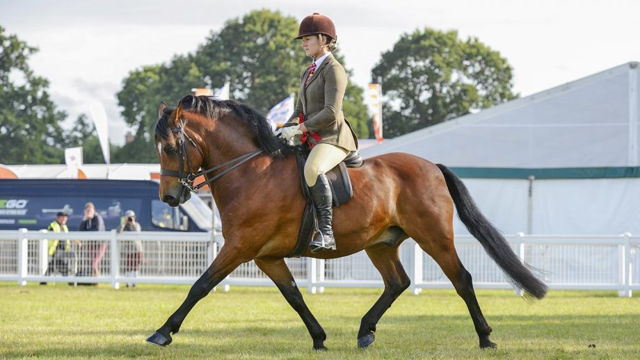 Aimee Devane explains how to ride shoulder fore