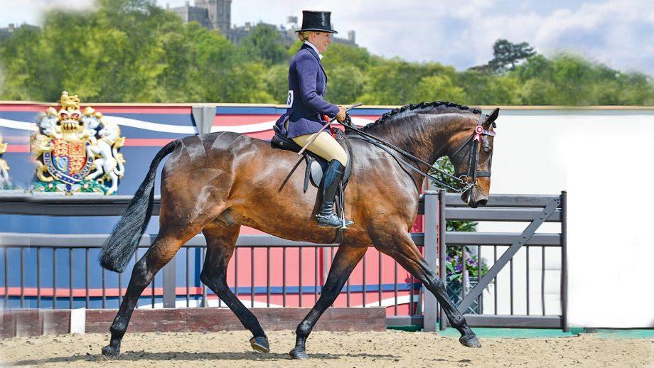 Royal Windsor Horse Show showing judges