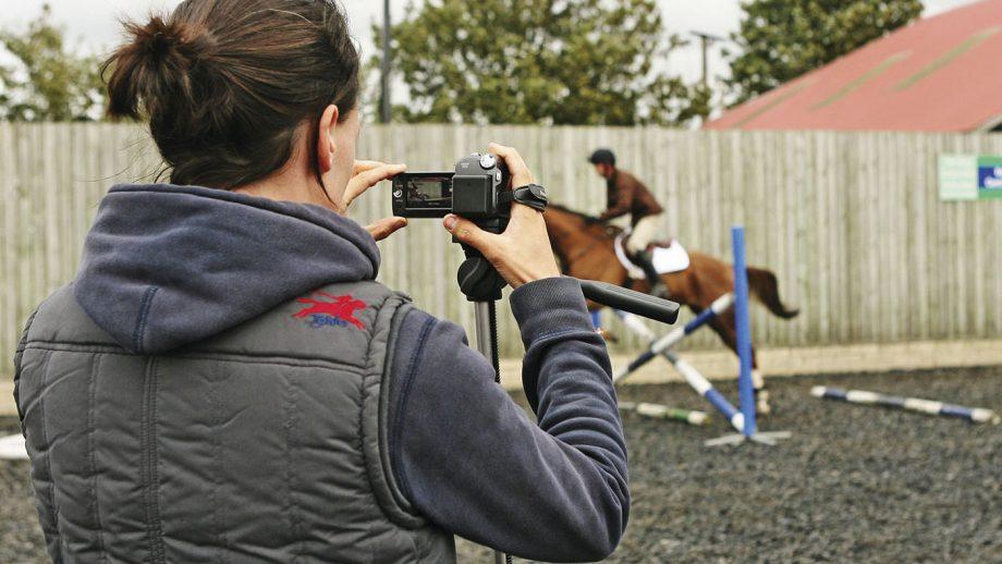 Lockdown tasks for horse owners