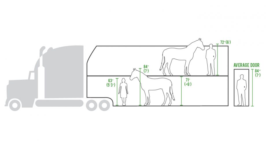 United States double-deck horse trailers Animal Welfare Institute