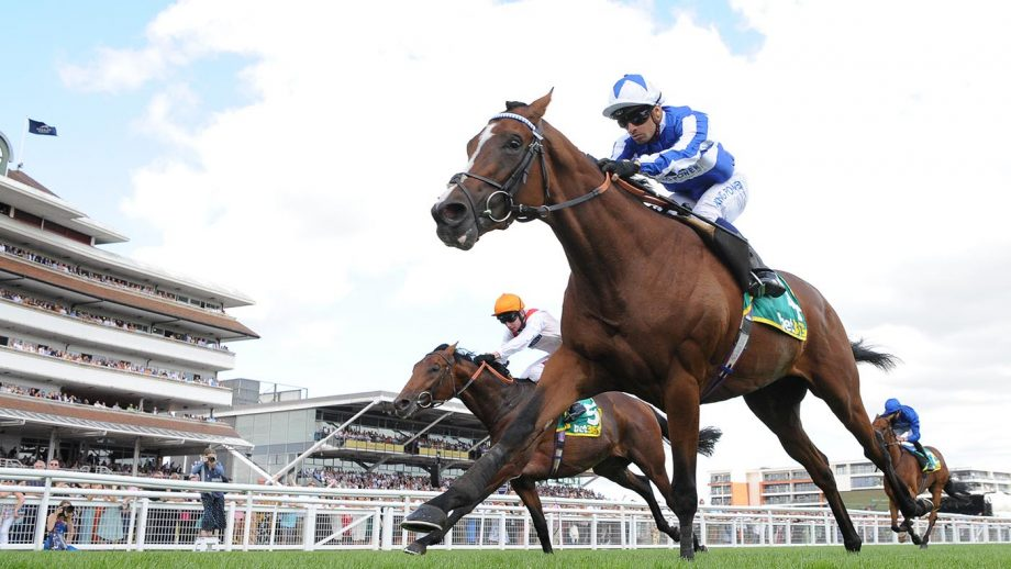 Lockinge Stakes bets Silvestre De Sousa on board Fox Chairman wins the bet365 Stakes (Registered As The Steventon Stakes) at Newbury Racecourse.