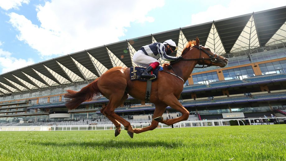 How to watch Royal Ascot on TV Alpine Star ridden by Frankie Dettori wins the Coronation Stakesduring day five of Royal Ascot at Ascot Racecourse.
