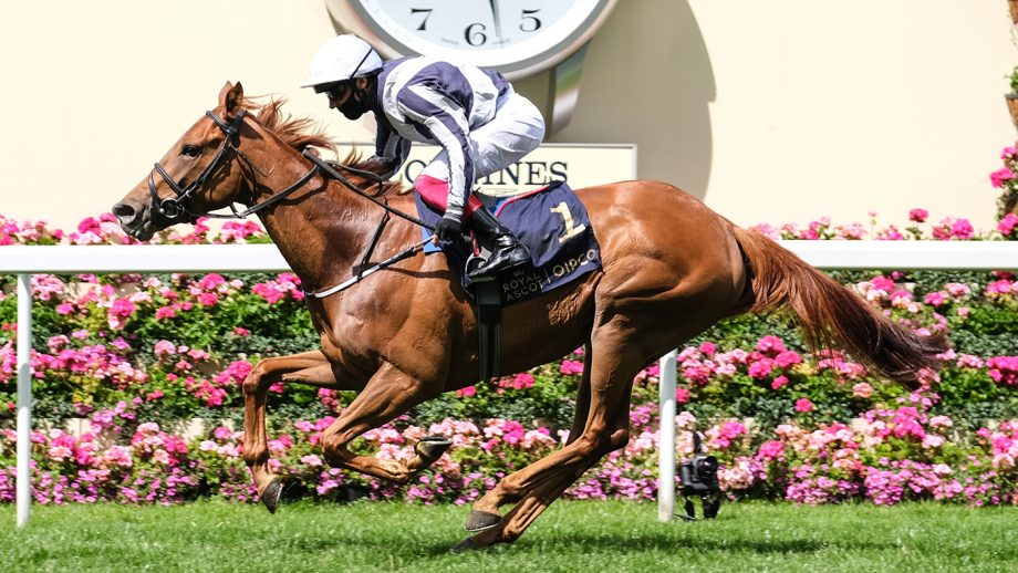 Best day to go to Royal AscotAlpine Star ridden by Frankie Dettori wins the Coronation Stakes during day five of Royal Ascot.