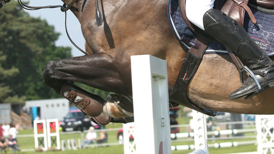 horse shows covid rules wales