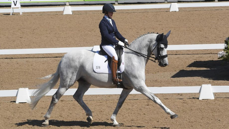 Claire Knowles rides Corona S to medium gold freestyle glory at the Winter Dressage Championships 2020