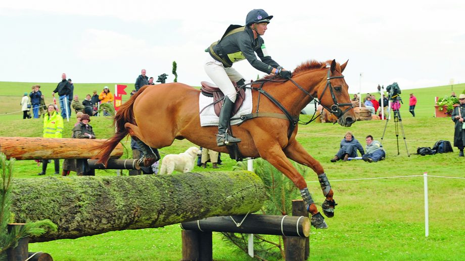 Eventer Sharon Hunt riding Tankers Town at Barbury Castle Horse Trials.