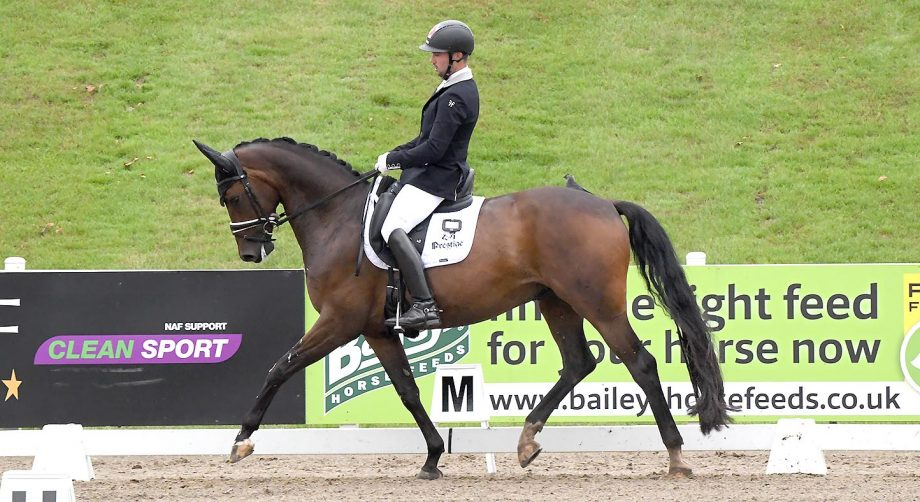 Greg Sims and Waverley Fellini winning the novice gold at the Winter Dressage Championships 2020 at Hartpury