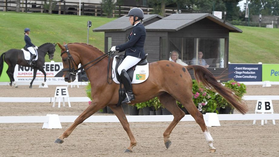 Judy Harvey and SP Bento win the elementary gold at the Winter Dressage Championships 2020