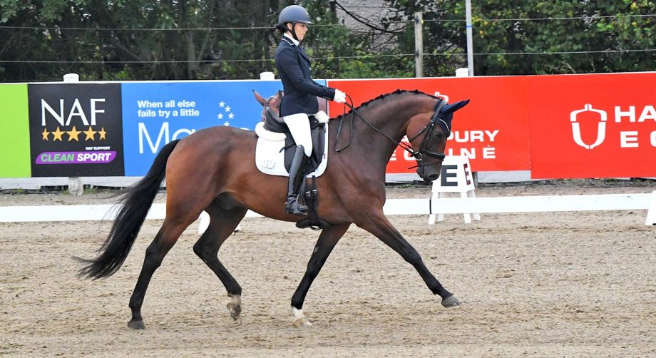 Maeve Morris and Headmore Footloose share elementary silver glory at the Winter Dressage Championships 2020