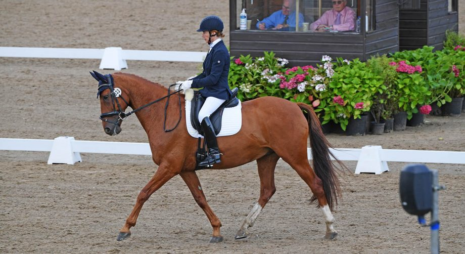 Lynn Wickes and Pauldarys Tiger Two Socks win the elementary silver freestyle at the Winter Dressage Championships 2020