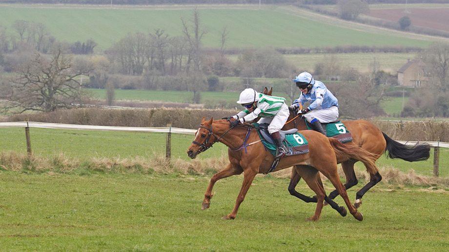 pony racing grant