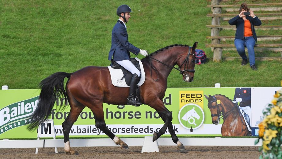 Owen Davies and Bali Sd win the prelim title at the Winter Dressage Championships 2020