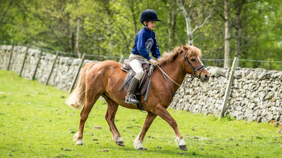 Tessa Waugh May's son Alec riding Rusty
