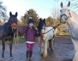 Off-road bikers chased riders