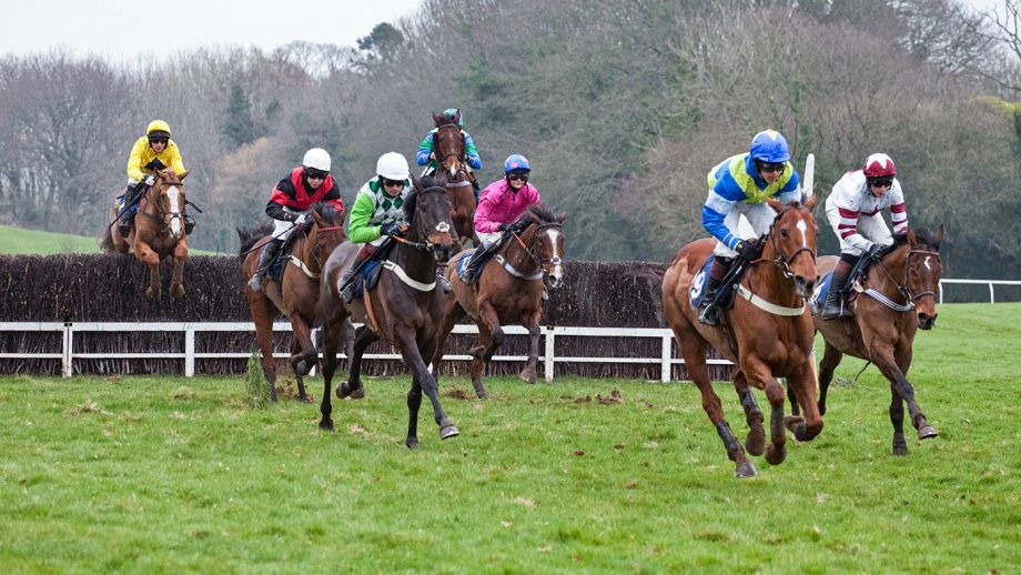 Watch Devon and Cornwall Point-To-Point livestream action
