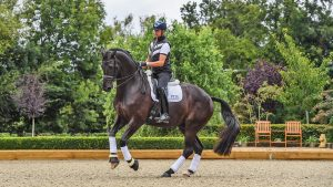 Carl Hester riding En Vogue at Carl Hester yard at Oakelbrook Mill near Malswick in Gloucestershire in the UK on the 3rd September 2020